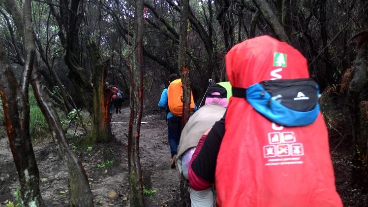 Pendakian ke Gunung Papandayan (kala kabut pagi itu turun)